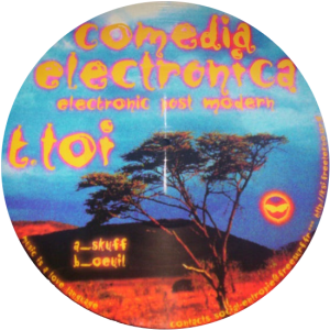 T.TOI picture vinyl Electronica post modern